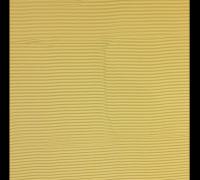 polaroid008